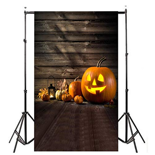 Dacawin Halloween Pumpkin Lantern Photography Backdrops, Photo Backgrounds Wrinkle Free Seamless Cotton Cloth(3x5FT) (M) ()