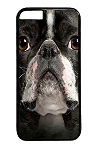 Big Face Boston Terrier Custom For Iphone 5/5S Case Cover Polycarbonate Black