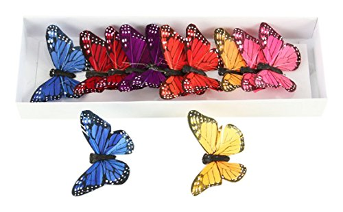 Shinoda Design Center 0165500211 12 Piece Bright Color Butterfly Decor, 3