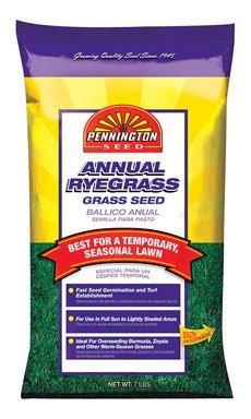 Pennington Annual Ryegrass to Overseed Warm Season Grasses, 7 lb