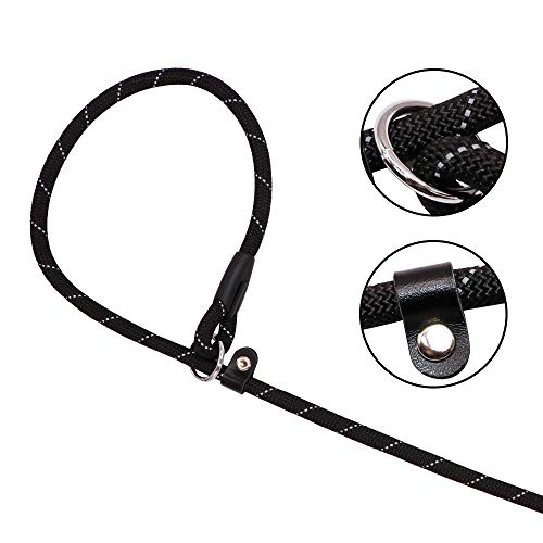 Amazon Com Joytale Slip Rope Dog Leash