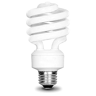 EcoSmart 75W Equivalent Daylight 5000K Spiral CFL Light Bulb (2-Pack)