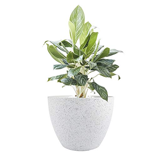 Large Planter Pots Indoor - Tree Planter 14.2 Inch Large Flower Pot Outdoor Planters Container Self-Watering Self-Aerating Planter with Drain Holes (Speckled White) (Large Planter Pots For Trees)