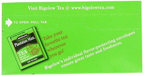 Bigelow Plantation Mint Tea, 20-Count Boxes (Pack of 24) by Bigelow Tea (Image #4)
