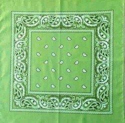 Lime Paisley Splash - Lime Green Paisley Bandana