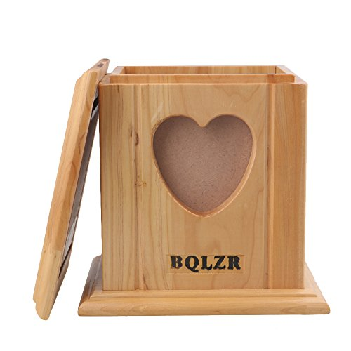 BQLZR 15.9x13x13.7cm Wooden Cedarwood Dog Cat Pet Memorial Box Cremation Ashes Remembrance Urn with Heart Shape Photo - Prova Picture Model
