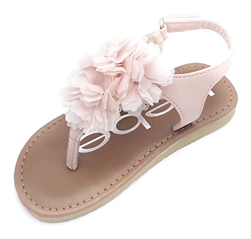 bebe Toddler Girls Thong Sandals with Tulle Flowers, Blush, 9