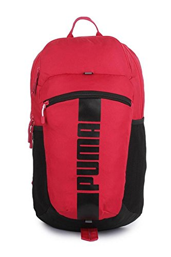 5e2d0c60f0 21 ltrs Pink Laptop Backpack (7440108)  Amazon.in  Bags