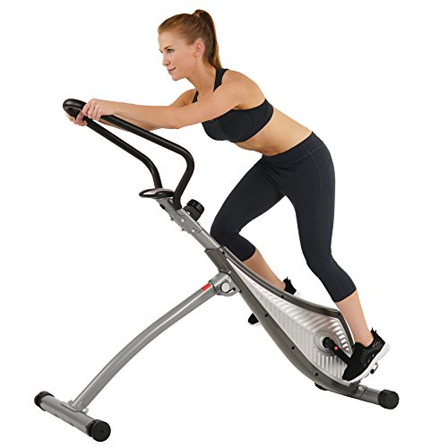 Sunny Health & Fitness SF-B0419 Incline Plank Standing Exercise Bike (Sunny Elliptical Magnetic)