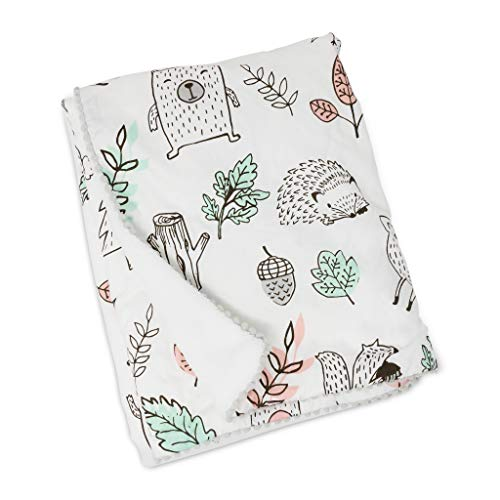 (Lolli Living Baby Blanket With Sherpa. Kayden Printed Ultra-Soft Throw Blanket for Cribs and Strollers (40x30 inch))