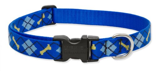 "LupinePet Originals 1"" Dapper Dog 16-28"" Adjustable Collar for Large Dogs"