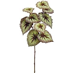 "26"" Silk Begonia Leaf Stem -Green/Purple (Pack of 12) 58"