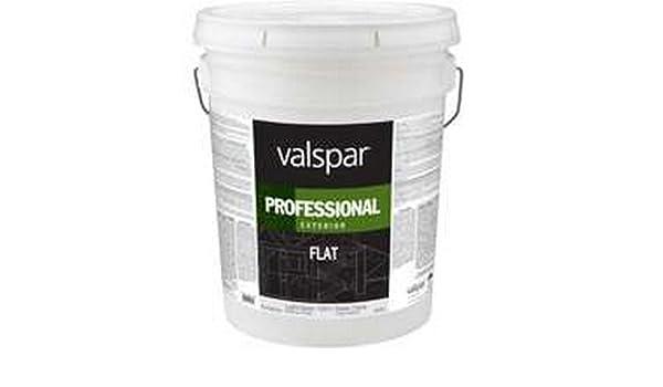 Amazon Com Valspar Professional Flat Exterior Latex Paint Everything Else