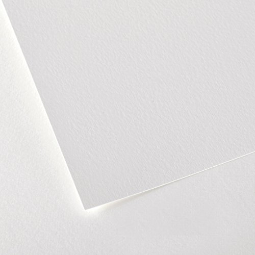 Canson Montval Watercolor Cold Press Art Paper, 22''X30'' (10 Sheets) by Canson