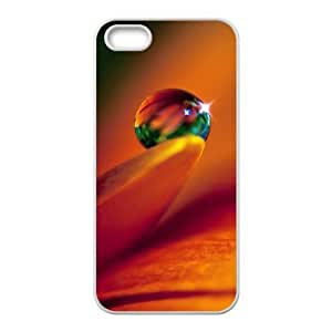 iPhone 5 5s Cell Phone Case White macro Insect With Water Drops Phone cover O7505980