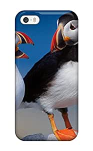 Premium Protection Beautiful Birds Case Cover For Iphone 5/5s- Retail Packaging