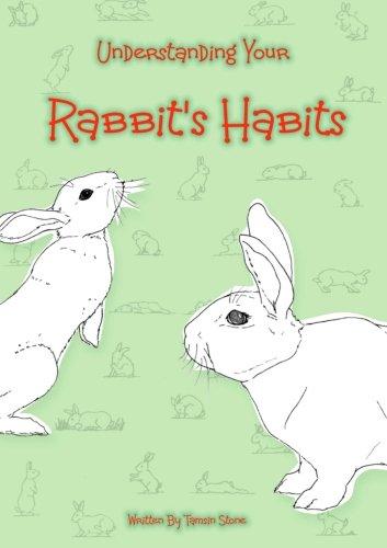 Understanding Your Rabbit's Habits