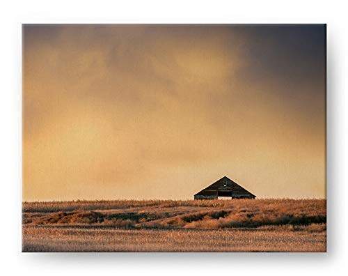 amazon com abandoned barn landscape photograph gallery mounted