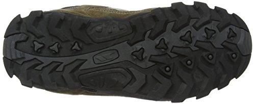 Fawn Chaussures De Noir Randonnée Montantes Beige Trespass Pour Femme wxOq8Uaa6