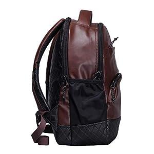 F Gear Luxur 25 Ltrs Brown Laptop Backpack (2404)