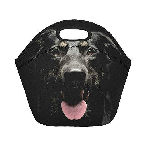 InterestPrint Lunch Bags Mixed Breed Black Dog Lunch Bag Lunch Box Lunch Tote For Adult Teens Men Women