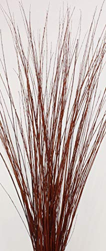 Green Floral Crafts 3-4 ft Tall Burnt Red-Orange Asian Willow, Bunch of 50-60 Tall Sticks (Vase Not ()