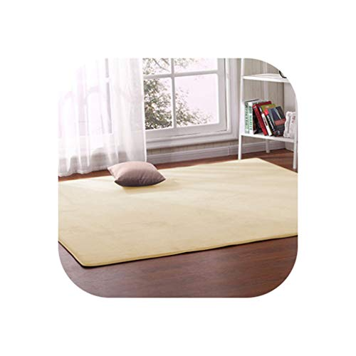 - Thick Coral Fleece Carpet Living Room Coffee Table Sofa Blanket Children's Room Mat Bedroom Bedside Bay Window Rectangular Rug,2,60 X120Cm