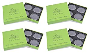Year of Plenty Set of 16 Fermentation Weights for Use in All Wide Mouth Mason Jars for Fermenting Sauerkraut, Kimchi, Pickles and Other Healthy Fermented Foods Full of Probiotics (16)...