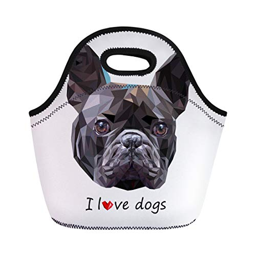 Tinmun Lunch Tote Bag Brown Dog Breed Cute Pet Animal Bulldog French Gray Reusable Neoprene Bags Insulated Thermal Picnic Handbag for Women Men