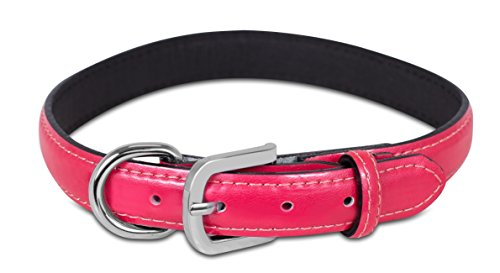- Internet's Best Patent Leather Dog Collar | Large | 16 - 20 Inch | Pink | Pet Collar