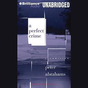 A Perfect Crime Audiobook
