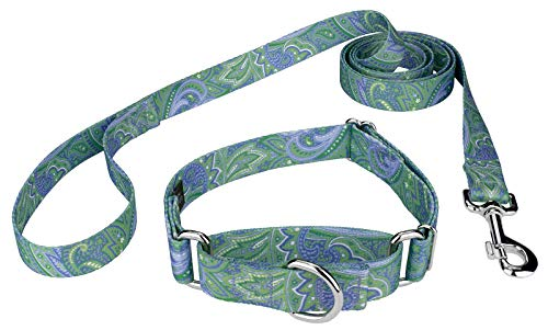 Country Brook Design Green Paisley Martingale Collar & Leash - Large