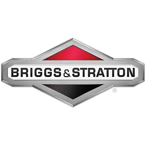 Briggs & Stratton 593234 Carburetor Genuine Original Equipment Manufacturer (OEM) Part