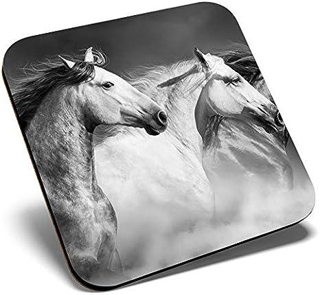 Gran posavasos cuadrado BW – hermosos caballos salvajes animales ponis | Posavasos de calidad brillante | protección de mesa para cualquier tipo de mesa #41218