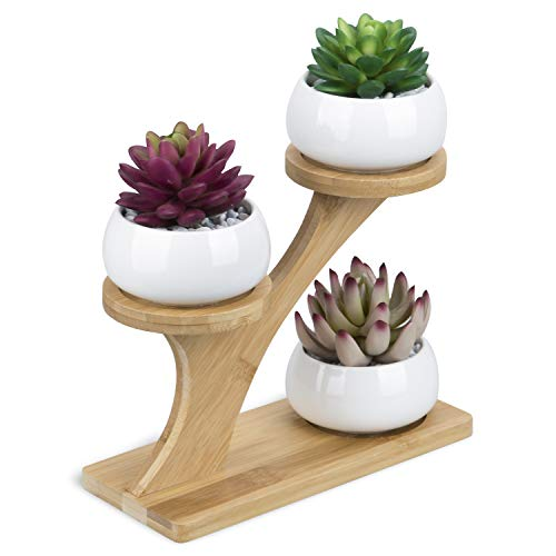 3pcs White Ceramic Succulent Pots with 3 Tier Bamboo Saucers Stand Holder - Modern Decorative Flower Planter Plant Pot with Drainage - Home Office Desk Garden Mini Cactus Pot Indoor Decoration