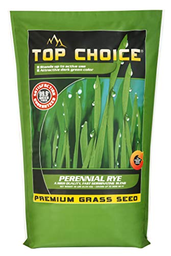Top Choice 100304 Perennial Rye 10LB, Assorted