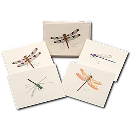 Note Dragonfly Card - Earth Sky & Water Steven M. Lewers LEWERSNC25 Dragonfly & Damselfly Notecard Assortment (2 Each of 4 Styles)