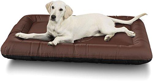 Knuffelwuff 13969 - 001 cama impermeable para perros Avery con diseño vintage, XL, 88 x 73 cm, color marrón: Amazon.es: Productos para mascotas