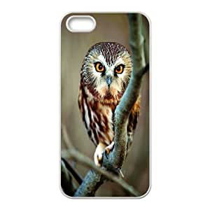 Owl art Hard Snap Cell Phone Case Cover for For iphone Case 5,5S FKGZ470026