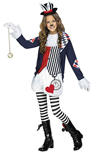 Fun World Alice in Wonderland Costume, X-Large, Multicolor