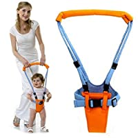 Fenido Toddler Learning Walker Suitable for Baby Children 0-2 Years Old Walkers