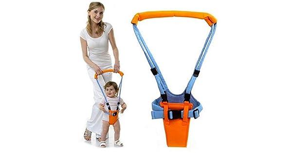 Amazon.com: Serwell - Andador de aprendizaje para niños de 0 ...