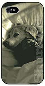 Case For HTC One M7 Cover Case Sleeping friends. Dog in bblack plastic case / dog, animals, dogs