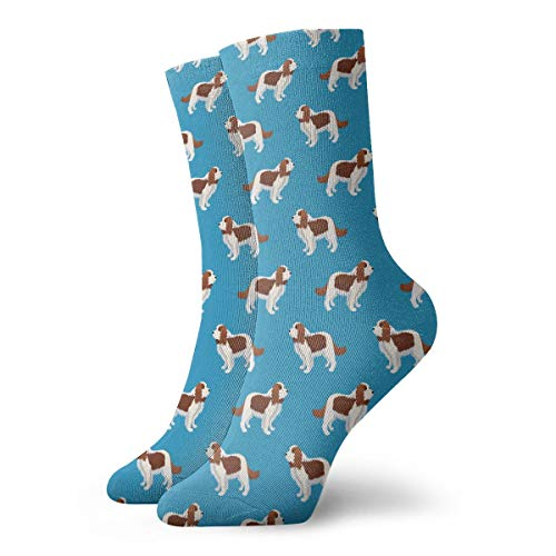 Cavalier King Charles Spaniel Dog Pattern Novelty Short Crew Socks Casual Athletic Sports Crew Tube Socks