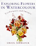 Exploring Flowers in Watercolour, Siriol Sherlock, 0713480246
