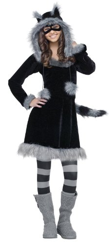 Cool Halloween Costumes For Tween Girls (Fun World Sweet Raccoon Teen Costume, Black,Junior)