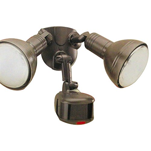 Regent Motion Activated Flood Light