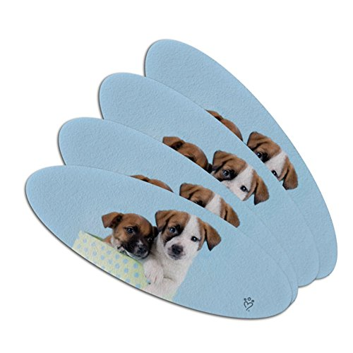 Jack Russell Terrier Puppies Dogs Gift Box Double-Sided Oval