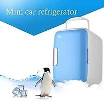 Gfone 4L Mini Car Fridge Portable Car Cooling and Warming Fridge ...