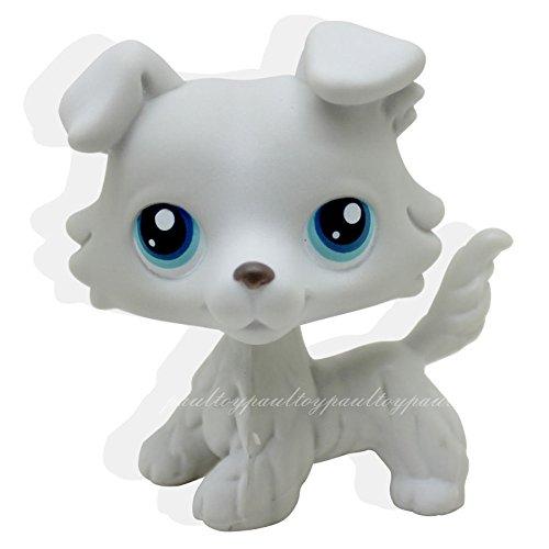 [tongrou #363 Rare Littlest Pet Shop Grey Collie Dog Puppy Blue Eyes Animal LPS Toy] (Wiener Dog Spider Costume)